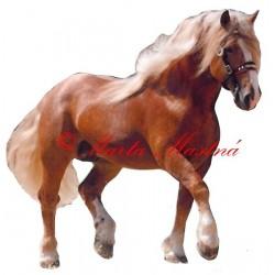 Samolepka kůň českomoravský belgik Béďa, chladnokrevník, koně
