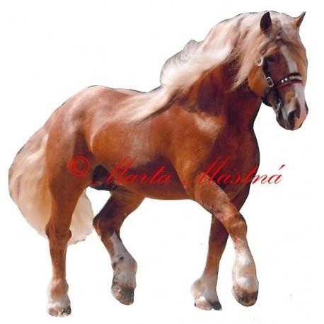 Samolepka kůň českomoravský belgik Béďa