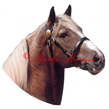 Samolepka kůň českomoravský belgik Azur