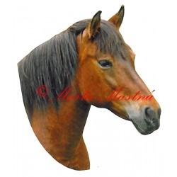 Samolepka hucul, pony, kůň, koně