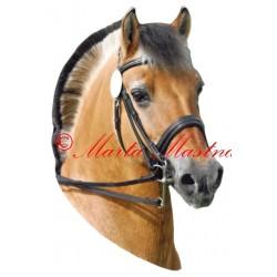 Samolepka fjordský kůň