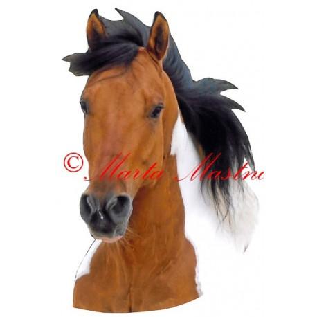 Samolepka paint horse