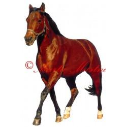 Samolepka quarter horse