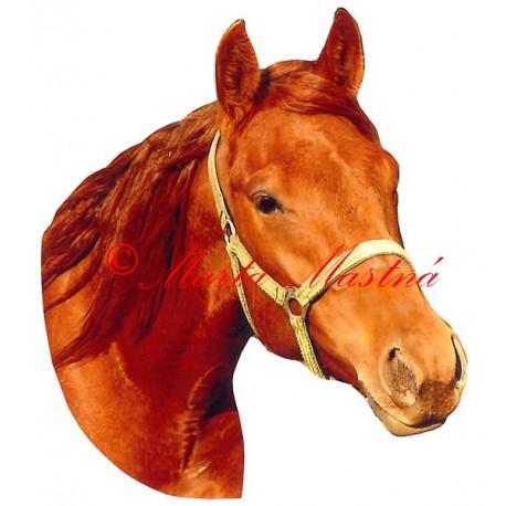 Samolepka quartër horse