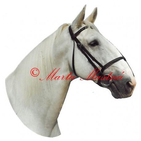 Samolepka kladrubský kůň